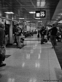 300-bw-logan-airport-01042016_09