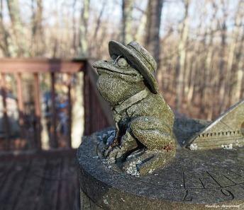 300-froggy-friday-13th-13012017_026