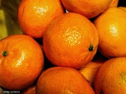 300-fruit-tangerine-orange-230117_02