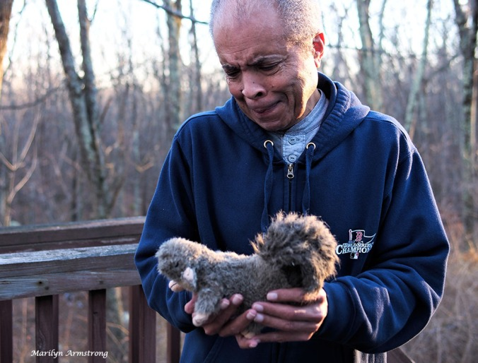 Garry cradles a newly sutured squirrel, but fears for his future.