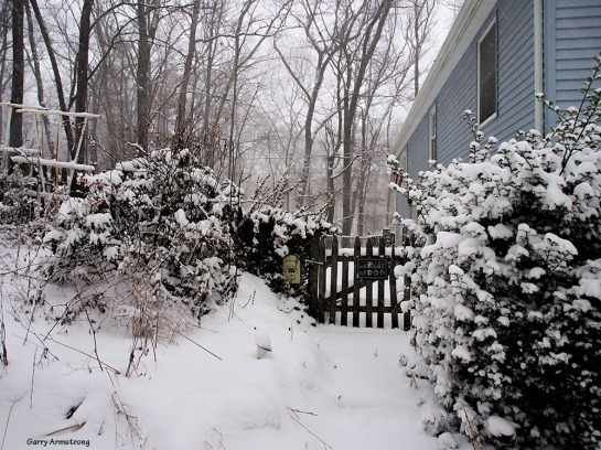 Natural neutral color - our gate in snow - Photo: Garry Armstrong
