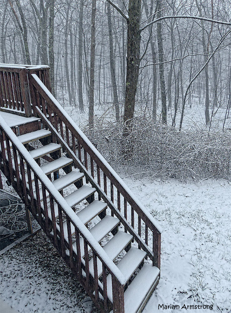 The snow had just begun when I shot this one. An hour later, it was another story.