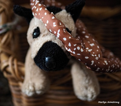 Pretzel with Small Dog
