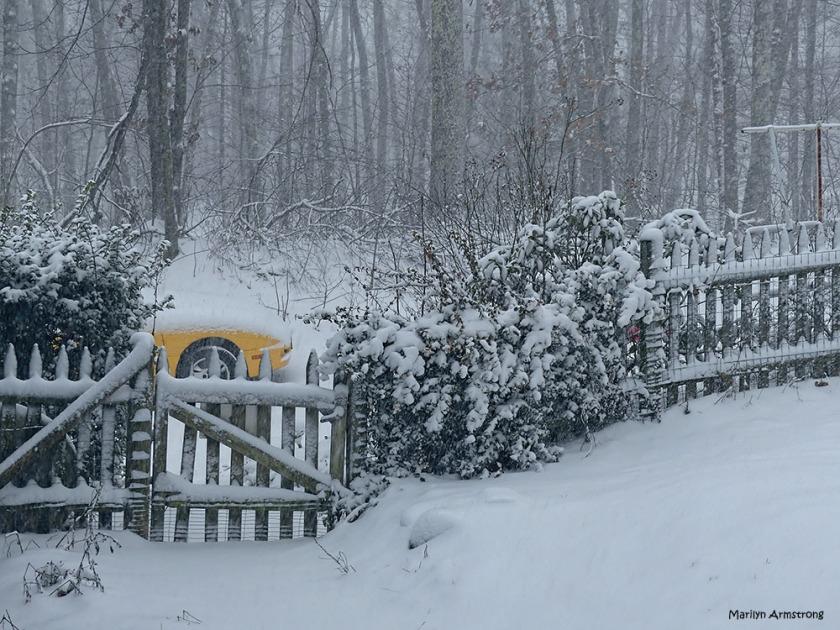 180-gate-snow-090217_042