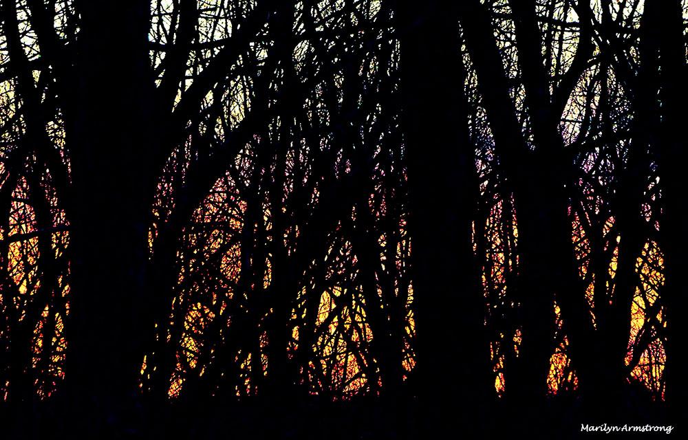 180-sky-color-dawn-01172017_06