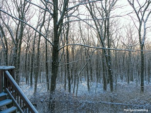 180-snow-dawn-020117_001