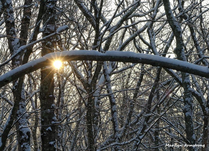 180-snow-dawn-020117_025