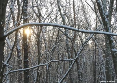 180-snow-dawn-clean-020117_014