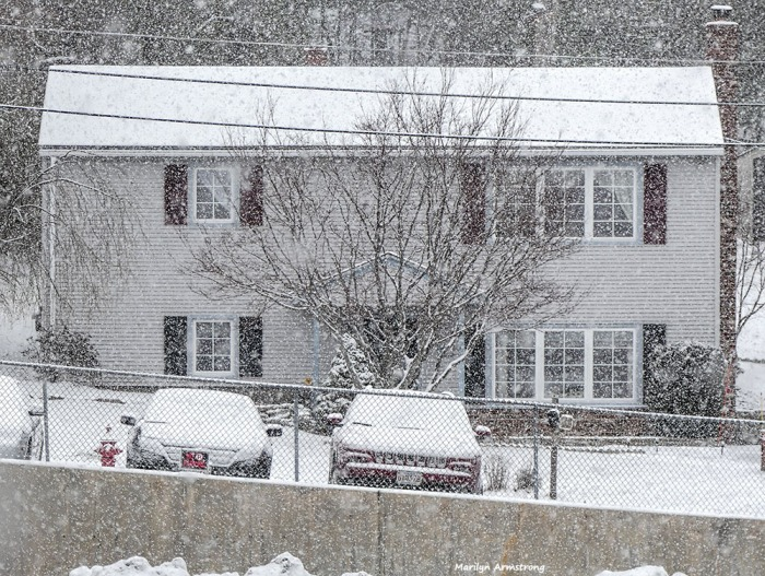180-snow-falling-310117_005