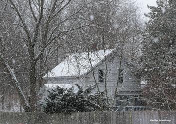 180-snow-falling-310117_008
