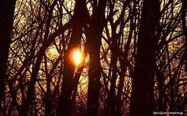 300-black-orange-sunrise-030716_02