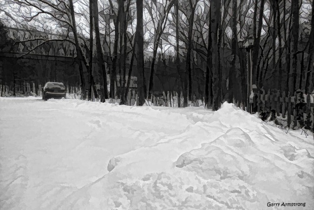Looking up the driveway -- on which we can't drive. Not until it gets plowed again.