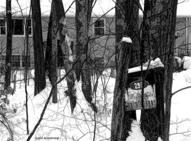 The house through the trees and snow