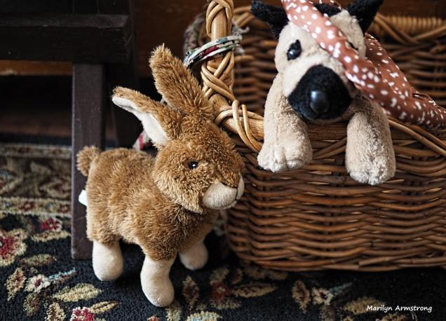 300-dog-toys-2-020317_006