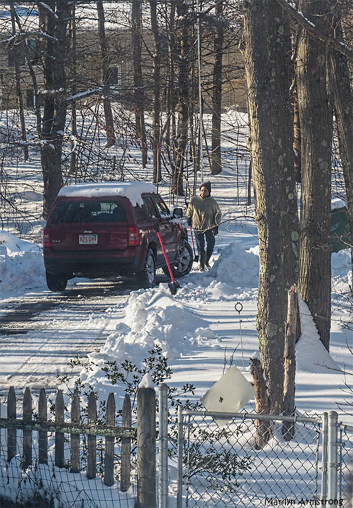 That's me, doing my job, clearing the snow from our parking area. Obviously Marilyn's picture. You knew that, right?