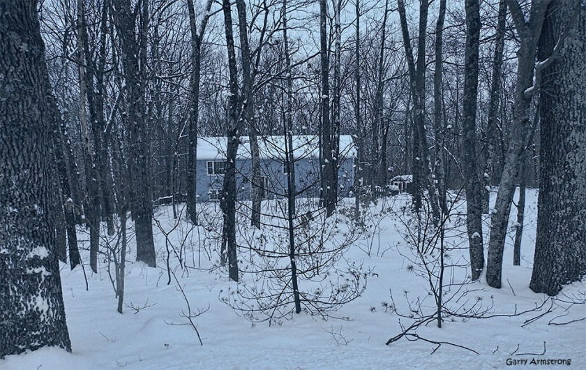 Our house from the road through the trees and snow