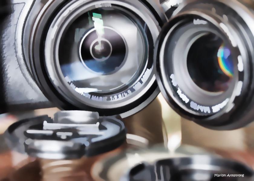 300-omd-both-cameras-4-240217_03