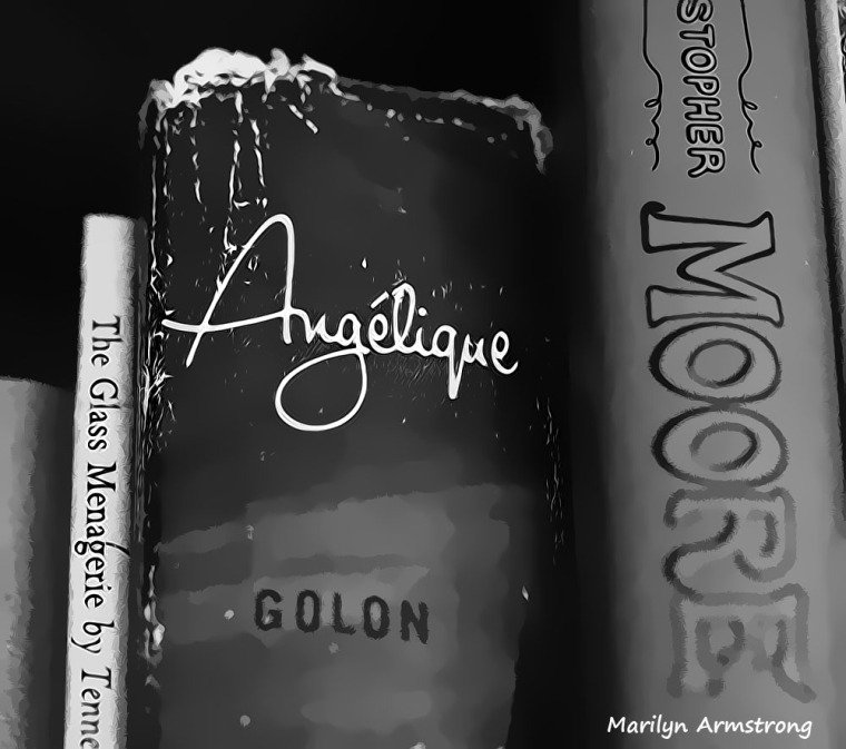 Angelique - Never forgotten, the book that made me ... ME!