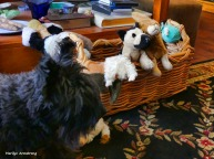 180-Bonnie-Dogs-Toys-041617_040