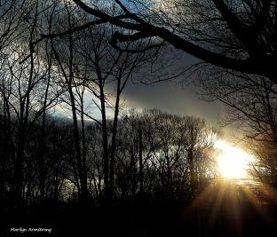 180-Sunset-Aldrich-St-210117_03