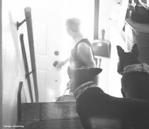300-bw-burnout-stairs-dogs-tub-073016_018
