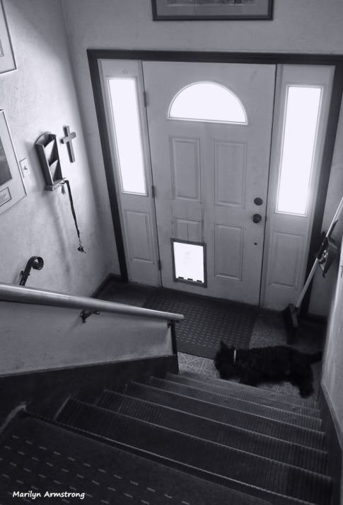 300-bw-stairs-bonnie-at-home-071916_02