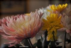 300-spring-bouquet-041517_020