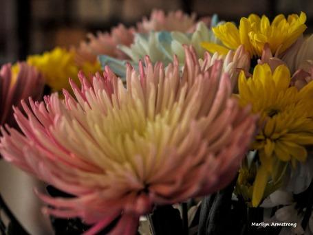 300-spring-bouquet-041517_027