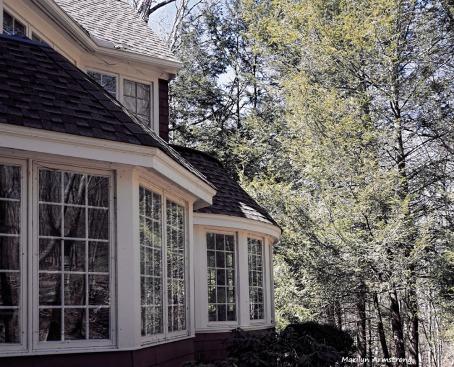 300-windows-curley-008