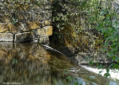 180-Bridge-Canal-MA-051617_008