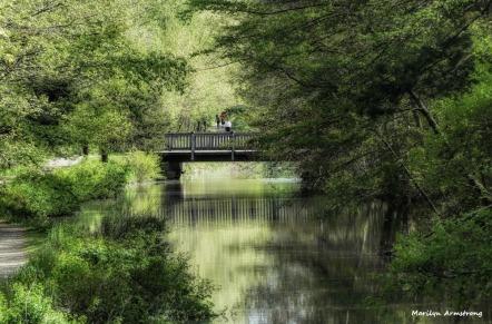 180-Bridge-Canal-MA-051617_026