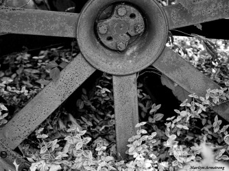 300-bw-tractor-wheel-mid-may-051817_029