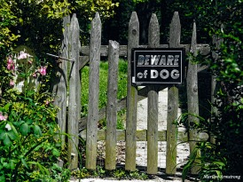 300-dangerous-gate-mid-may-051817_045