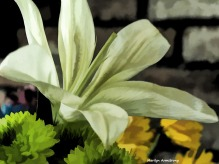 300-lily-bouquet_19