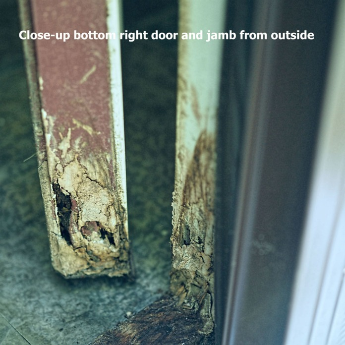 180-close-up-bottom-right-front-door-shawn-perry-062217_027