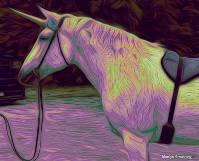 180-Glowing-Multicolor-2-Unicorn-Mar-06032017_021