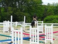 180-Ring-Horses-Marilyn-060317_012