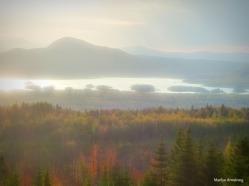 300-Autumn-Trees-AtteanView_051