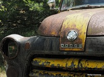 An old dodge pickup