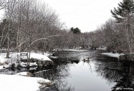 300-Twisted-Snowy River-032015_02