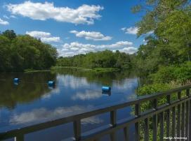 180-Broad-River-Fence-Roaring-Dam-072617_047