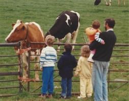 The kids and the cows