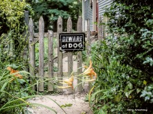 300-gate-garden-july-3-garry-070317_066