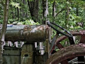 300-Tractor-In-Garden-05202015_019
