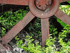 300-tractor-wheel-mid-may-051817_031