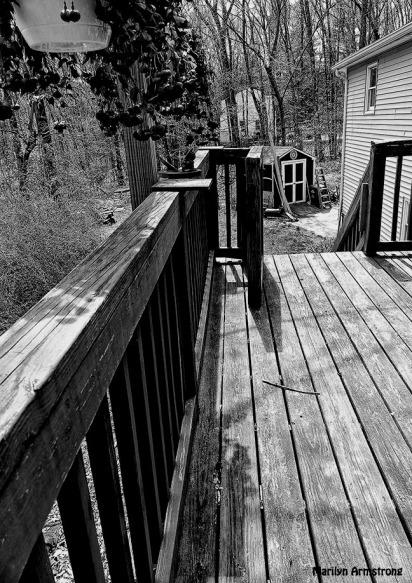 72-BW-Wooden-Deck-Which-Way_17