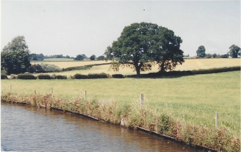 canal - field