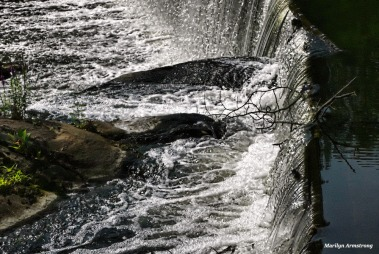 Roaring Dam - Photo: Marilyn Armstrong