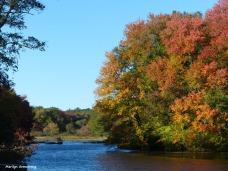 180-Shiny-Mumford-Dam-Autumn-10102016_052