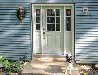 300-duke-with-new-front-door-082317_029